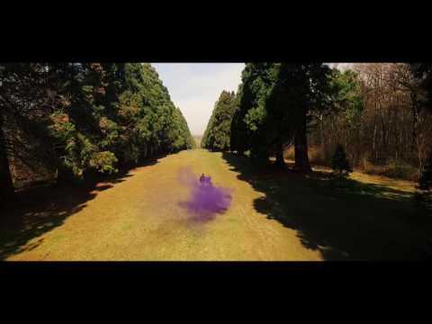 Stwizybinks - Purple Way