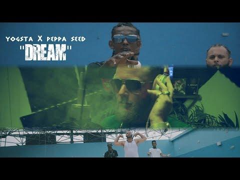 Yogsta x Peppa seed - Dream