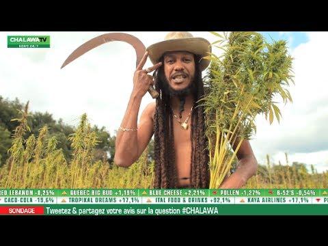 Yaniss Odua - Chalawa (generation H)